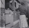 Freda at Boreham Wood Horse Sanctuary, 1953