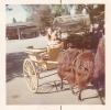 Di and Daniel on lama ride on Trip to London Zoo 1974