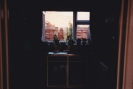 39 Gordon Rd, kitchen view as we sold it 1986